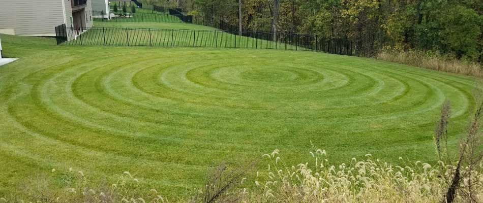 Circle mowing stripes in backyard for Columbia, MO customer.