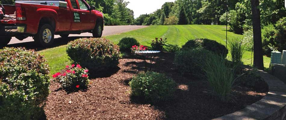 Columbia, MO front yard with new dark mulch around bushes and flowers by McVey Mowing.